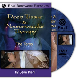 Neuromuscular Therapy: Torso DVD